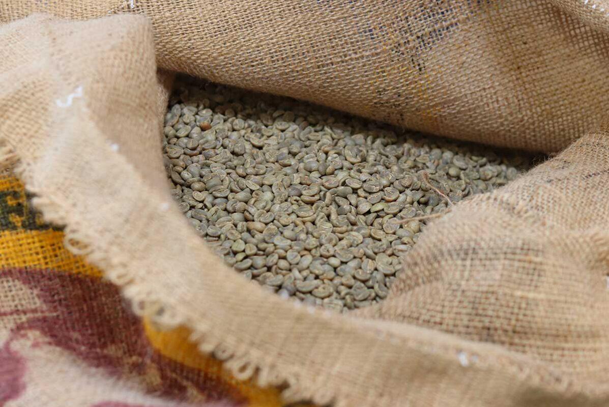 Ungeröstete Tatico Kaffeebohnen im Kaffeesack