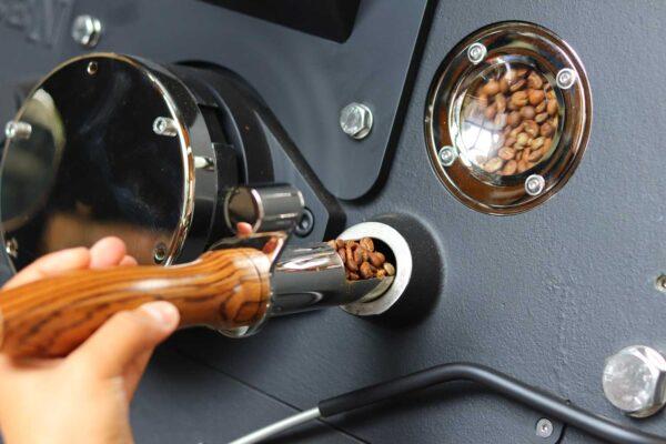 Tatico Röstereibesichtigung: Blick auf Kaffeebohnen